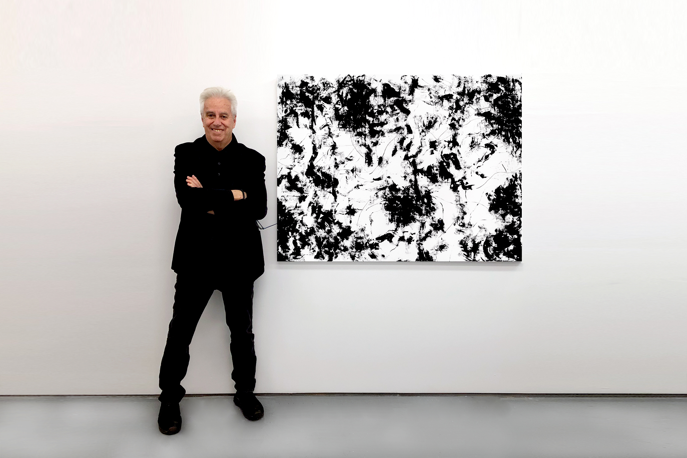 Howard Ziff Abstract Artist
